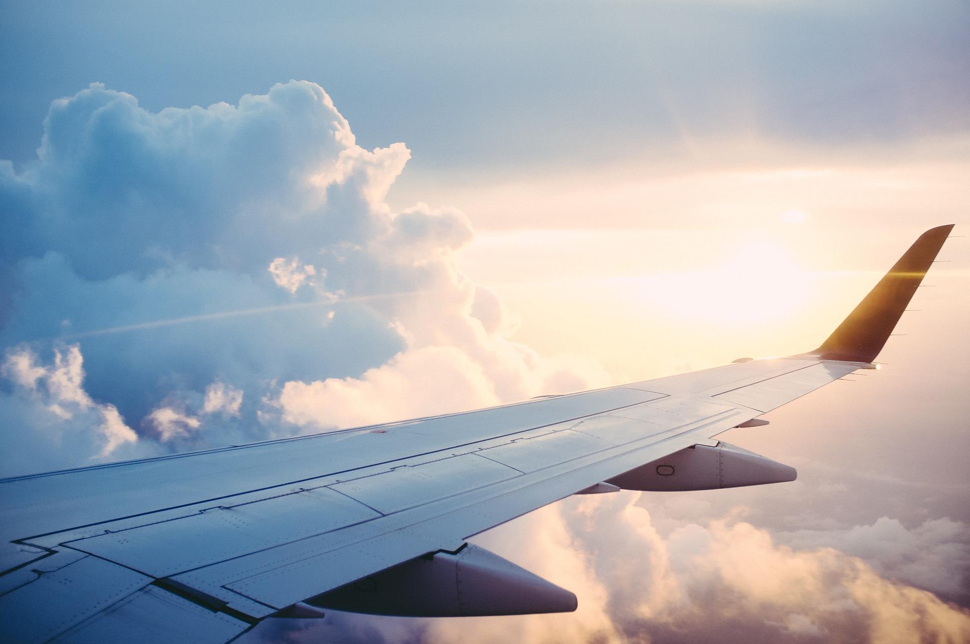 Plane Travelling UK Exchange Almond Voc. Link Erasmus+